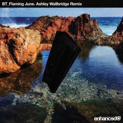 Flaming June (Ashley Wallbridge Remix)