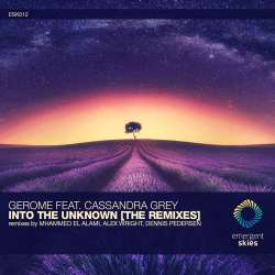 Into The Unknown (Mhammed El Alami Remix)